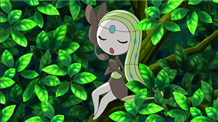 Meloetta in Best Wishes 2